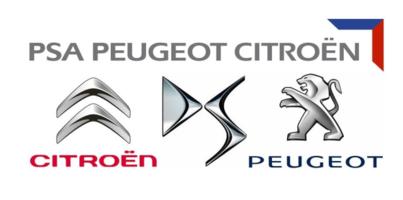 9734.S2 pro DCSG (Peugeot 4007, Citroёn C-CROSSER)